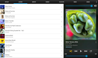Screenshot of Remote for iTunes