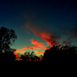 From A Distance by Vince Scaglione - Landscapes Cloud Formations ( clouds, distance, sky, sunset, silhouette, formations, weather, trees, dusk )