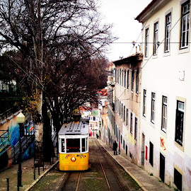 Lisboa in my heart. by Alessia Rinaldi - Transportation Trains ( friends, europe, train, travel, transportation, lisbon, portugal, lisboa, city )