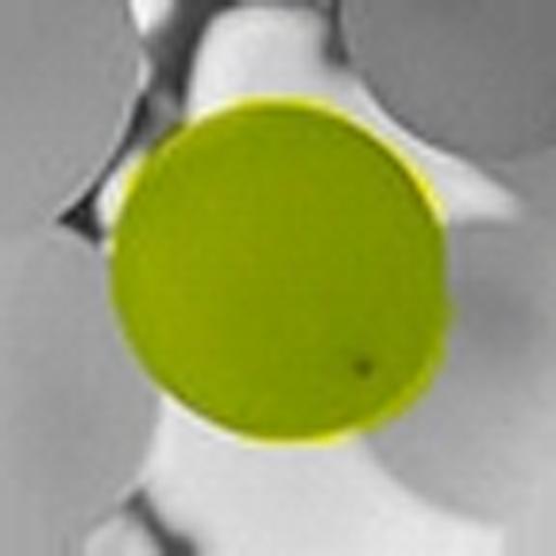 ColorUp Lite