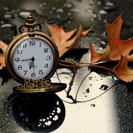 by Dipali S - Artistic Objects Still Life ( single object, oak leaves, clockwise, clock face, chrome, dial, equipment, jewelry, pocket watch, time, autumn, metal, timer, instrument of time, minute hand, isolated, clockworks, clock, elegance, watch, close-up, instrument of measurement, luxury, concepts and ideas, fall, man made object, accuracy, second hand, tachymeter, object )