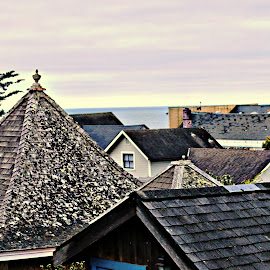 the roofs of Mendocino by Leslie Hunziker - Buildings & Architecture Homes ( coastal towns, mendocino, buildings, rooftops )