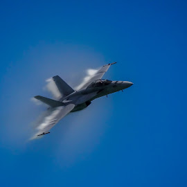 fast by Fred Faulkner - News & Events Entertainment ( f-15, fast pass, speed, chicago, air show,  )