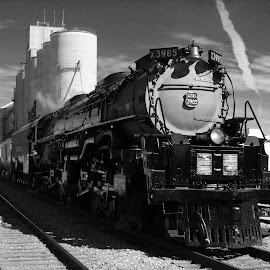 Union Pacific Challenger arrival. by Dan Dusek - Transportation Trains ( railroad tracks, black and white, railroad, train, transportation )