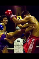 Screenshot of Muay Thai illustrated