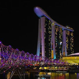 The Helix Bridge, Singapore by Nizom Ali - Buildings & Architecture Bridges & Suspended Structures