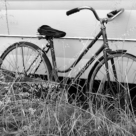 Old Bike next to Old Caravan by Chris KIELY - Transportation Bicycles ( old, caravan, bike, grass, white, black, bicycle,  )