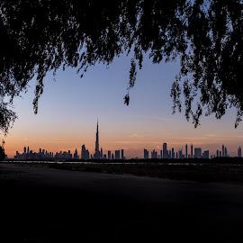 The Frame Dubai City by Walid Ahmad - Landscapes Travel ( sony, dubai, uae, landscape, photography )