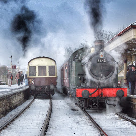Steam trains  by Angela Jones - Transportation Trains