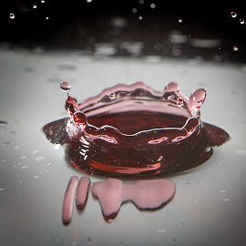by Andrew Richards - Abstract Water Drops & Splashes