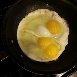 Double Yolk by Sherri Murphy - Food & Drink Cooking & Baking