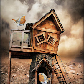 Home Tweet Home by Angelica Glen - Digital Art Things ( clouds, home, desert, tree, house, birds,  )