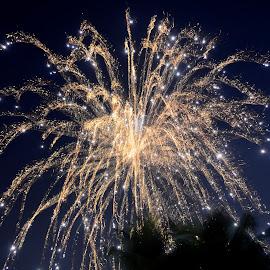 Celebration Continues.. by Devraj Poddar - Abstract Fire & Fireworks