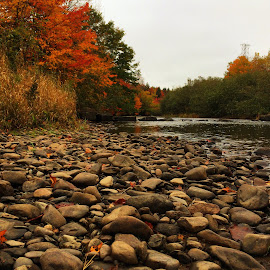 Long Distance of Autumn by Michelle Kinghorn - Instagram & Mobile iPhone ( canada, autumn, rivers )