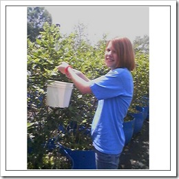 Carolyn Picking Blueberries