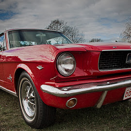 66Andy #1 by Martyn Cook - Transportation Automobiles ( mustang, red, 1966, christchurch, classic )