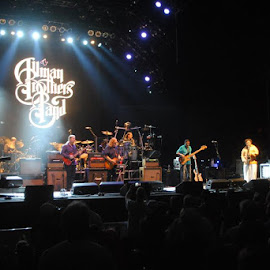 Allman Brothers Band by Gigi Cancglin - People Musicians & Entertainers ( music, concert, band, festival, entertainment )