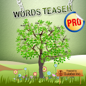 Word Teaser Pro - BrainTeasers
