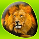 Animals 360 icon