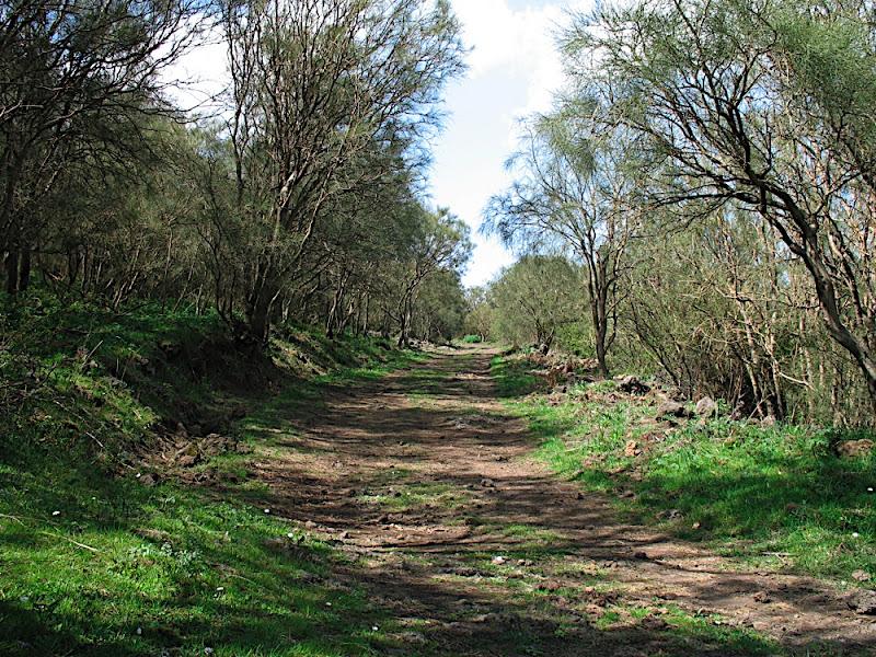 Sul sentiero verso la Cisternazza