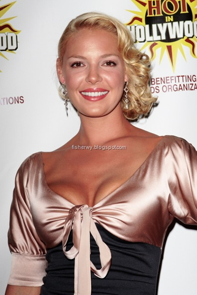 Katherine Heigl Hot in hollywood picture