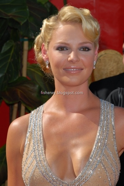 Picture of top ten of Hollywood best breasts Katherine Heigl