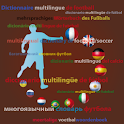 Multilingual Soccer dictionary icon