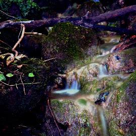 slow shutter by Nic Scott - Nature Up Close Water ( water, waterfall, slow shutter )