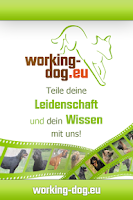 Screenshot of working-dog