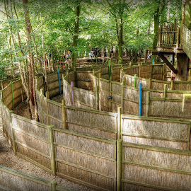 wooden Maze in the Woods by Mark Thompson - City,  Street & Park  Amusement Parks ( wooden, rope bridge, wood, trees, fences, pathways, maze )