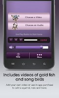 Screenshot of Cat iTonic – Free Cat Games