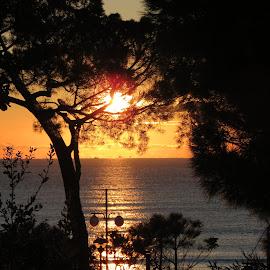 sunrise in Italy by Alessandra Belfanti - Landscapes Sunsets & Sunrises ( sea, seascape, sunrise, italy,  )