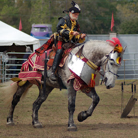 At The Joust by Philip Molyneux - News & Events Entertainment ( rider, equine, horse, medieval, joust,  )