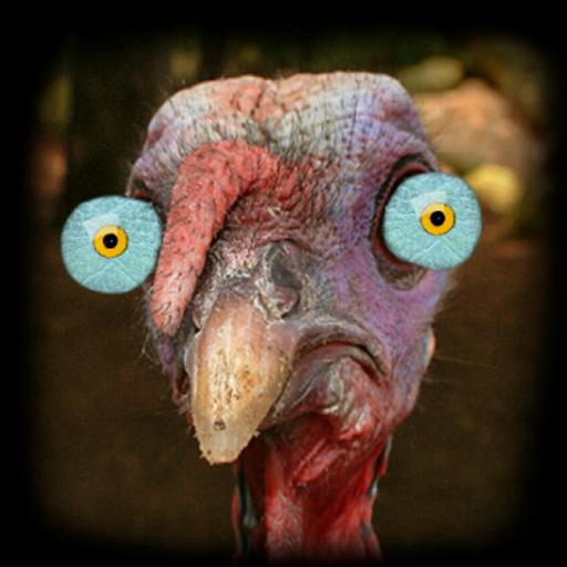 Turkey for Thanksgiving FULL LOGO-APP點子