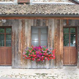 by Alireza Assadi - Buildings & Architecture Homes