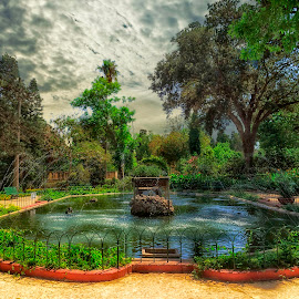 Sant Anton Gardens by Lino Chetcuti - City,  Street & Park  City Parks