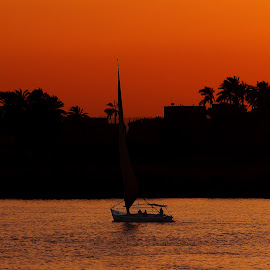 Felucca on the Nile by Gabriel Gutierrez - Landscapes Travel ( nile river, luxor, sunset, felucca, egypt )