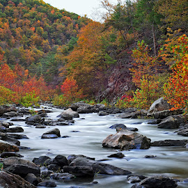 Fall on the Maury River by James Gramm - Landscapes Mountains & Hills ( water, mountains, color, fall, river )