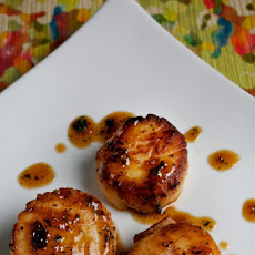Seared Scallops With Herbed Apricot Sauce