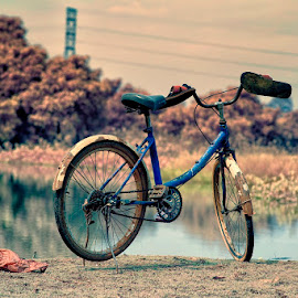 Belong to whom? by Roynindra Malaon - Transportation Bicycles
