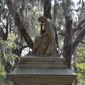 Lady in Waiting by Stephanie Parmley Givens - City,  Street & Park  Cemeteries