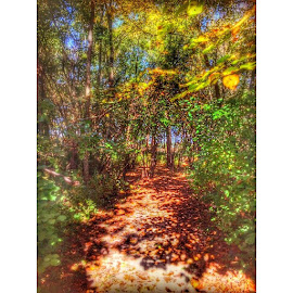 by Jennifer Remillard - Instagram & Mobile Instagram ( frombehindthelenz, photo, photography )
