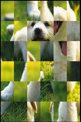 かわいい犬のゲーム
