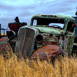 Overgrown Memories by Gary Winterholler - Transportation Automobiles