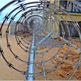 Barbed Wire by Denny Paul - Abstract Patterns ( fence, color, queens, barbed wire, abandon )