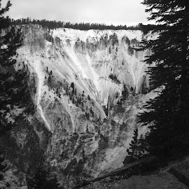 Yellowstone National Park Canyon by Brooke Donaldson - City,  Street & Park  Historic Districts ( black and white, wyoming, yellowstone national park, canyon )
