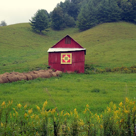 Amish Barn by Debbie Eaton - Buildings & Architecture Other Exteriors ( amish, amish barn, red barn, tn. amish, tennessee barns, hex signs )