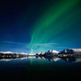 Aurora over Vesterålen by Marius Birkeland - Landscapes Starscapes ( reflection, snow, northern lights, aurora borealis, aurora,  )