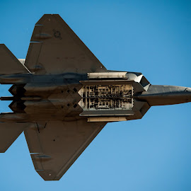 F22 Raptor by David Whelan - Transportation Airplanes ( f22 raptor )