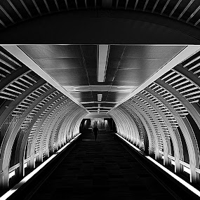 by Steve Wilking - Black & White Buildings & Architecture (  )